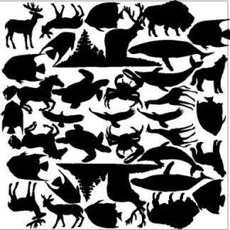 Hidden Images Animals Overlay